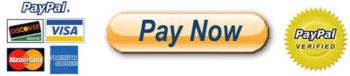 paynow button